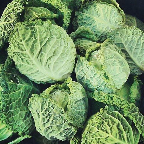 I used to eat a lot of cabbage when Ihellip