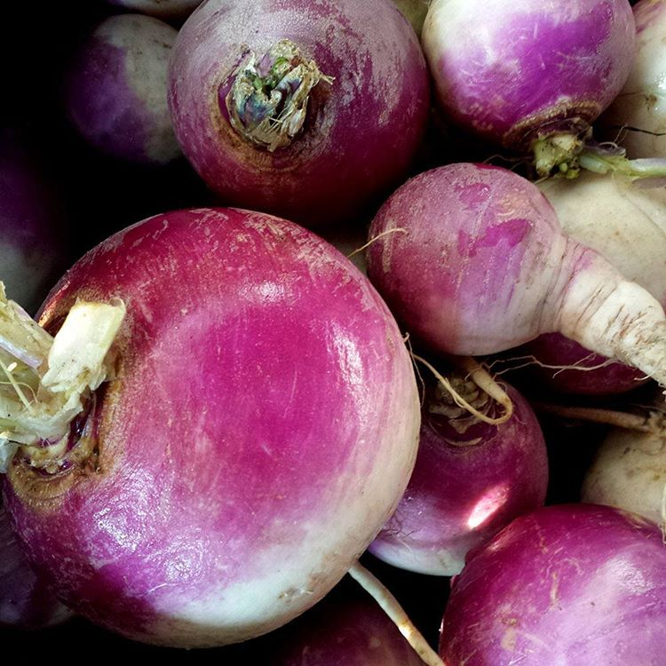 Turnips are a great vegetable for this holiday season buthellip