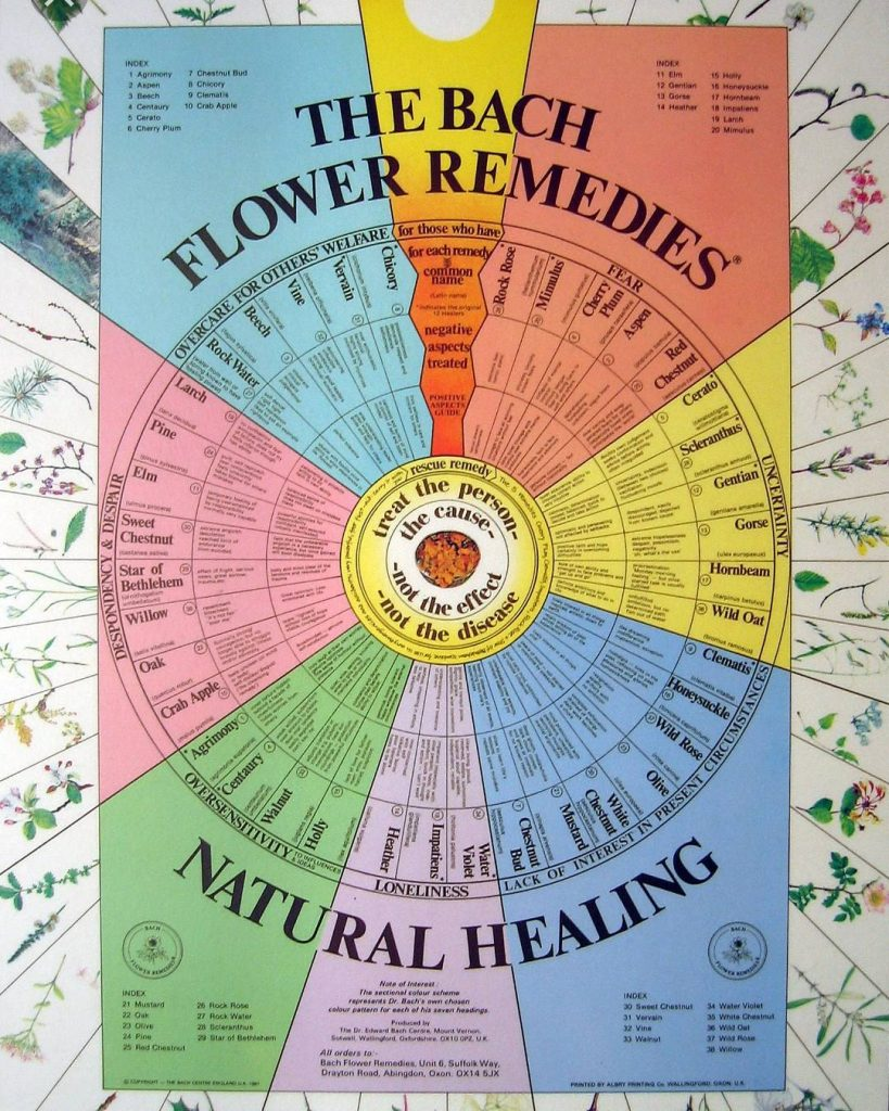 What are Bach flower essences?  Bach flower essences areextractshellip